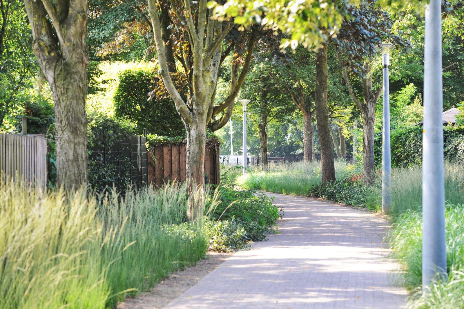 Park bomen