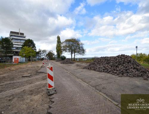 Park Barbarossastraat Nijmegen
