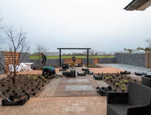 Onderhoudsvriendelijke tuin