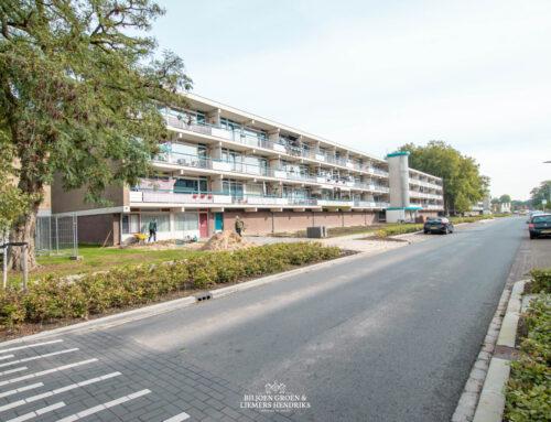 Revitalisatie buitenruimte flatgebouwen